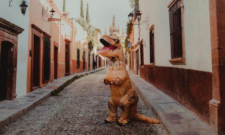 Co po nás najdou dinosauři